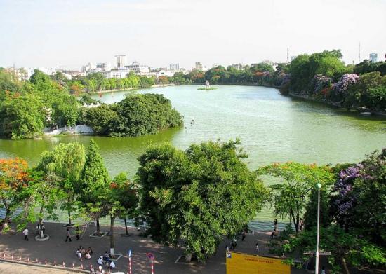 001.cây xanh